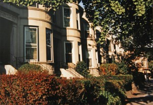 Rutland Road Neo-Renaissance Limestones - Lefferts Manor 1893-1993