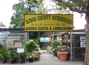 Kings Country Nurseries  - Prospects Lefferts Gardens