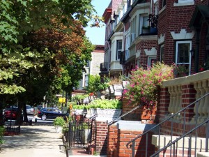 Rutland Road Greenest Block In Brooklyn 2010