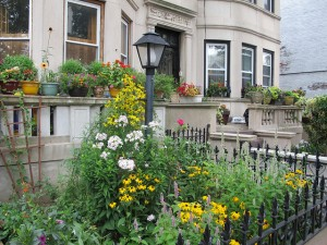 2013 Greenest Block in Brooklyn Sterling Street