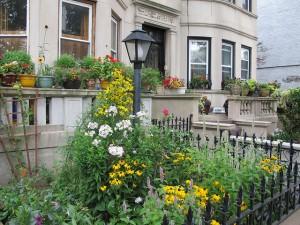 2013 Greenest Block in Brooklyn Sterling Street